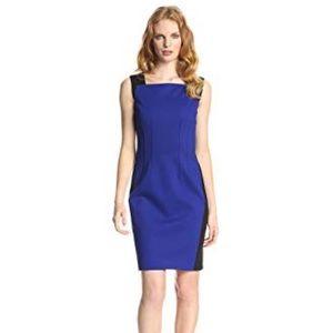T Tahari Cobalt & Black Sheath Dress Size 4